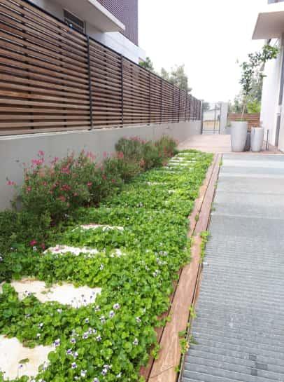 ניקיון ותחזוקת הגינה